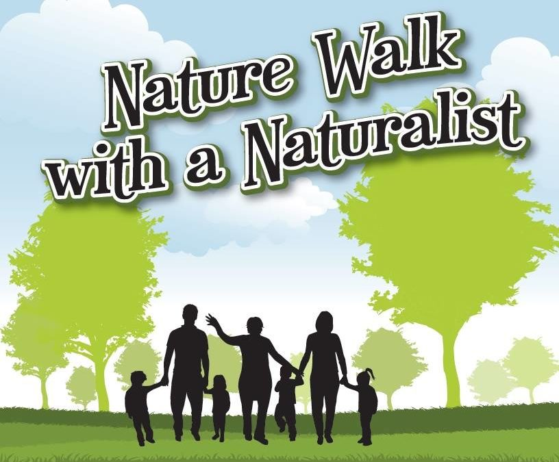 Upcoming Nature Walk