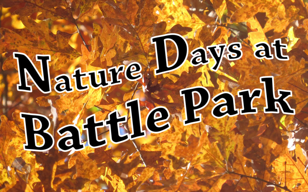 Fall Schedule of Nature Walks
